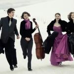 werner chamber quartet