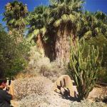 living desert and zoo