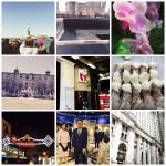 PicMonkey Collage - NYC